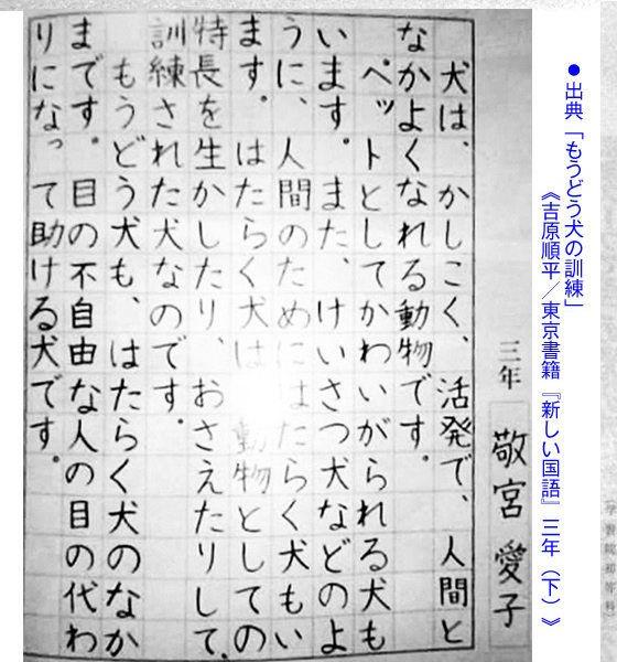字が上手すぎるΣ(・□・;)