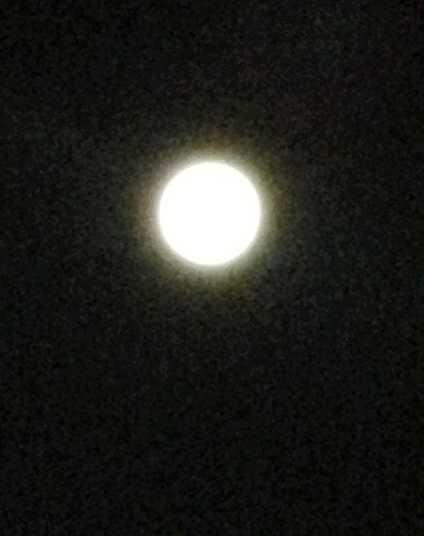 満月かな⁈