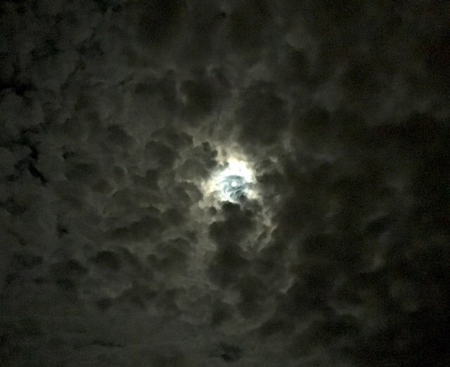 満月かな?