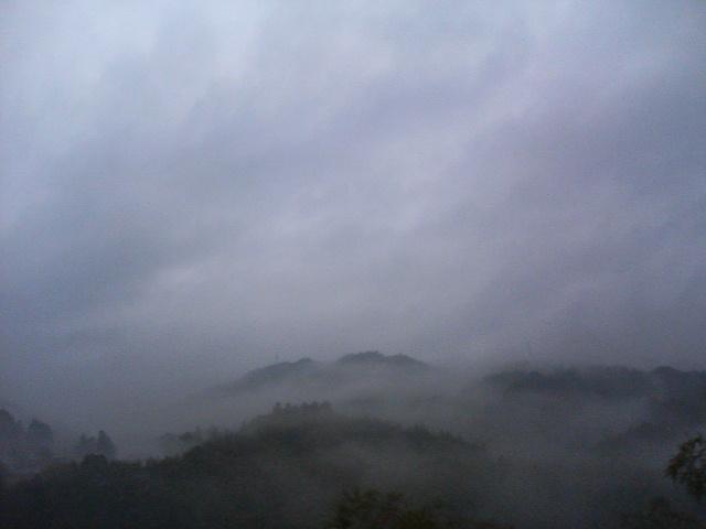 霧すごい。